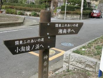 高麗山公園は【日本の森林100】にも選ばれています。ハイキングコースはA~Gまであり、いずれも徒歩約40分〜1時間ほどで頂上を目指せるので、登山初心者さんにおすすめです。