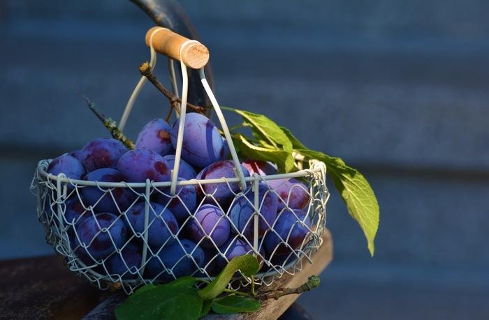 果物類を入れて!  果物なら、ディスプレイみたいでお洒落ですよね♪