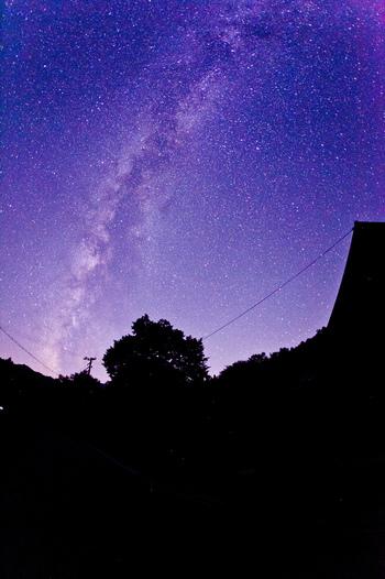 昼にはキャンプや観光を楽しんで、夜には美しい星空を眺めることができるんです。
