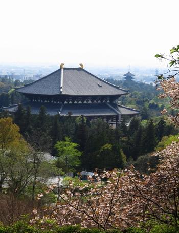 東大寺や奈良公園を中心とした一帯は、世界遺産である興福寺や春日大社など、見所がぎゅっと集まったエリアです。おすすめの観光コースを紹介しているサイトもたくさんありますので、ぜひ参考にしてみて下さい。位置関係をだいたい頭に入れながら歩くと、お目当ての名所旧跡を効率よく見て回ることができます。