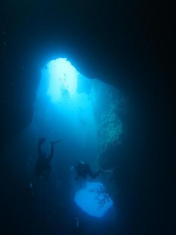 パラオのブルーホールは大型の魚を見られるブルーコーナーからも近く、一度のダイビングで二度楽しめるスポット。