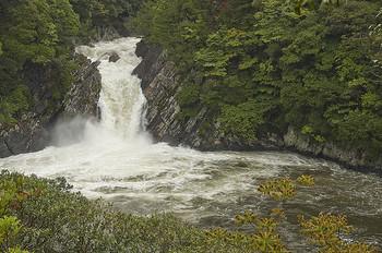 千尋の滝の下流にある小さめの滝です。 落差は6m。 太平洋の海上に直接落ちる滝で、こういった滝は全国でも2つしかなく、非常に珍しいです。