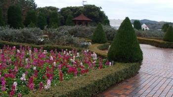 美しく手入れの行き届いた庭園。南房総らしい、季節ごとのお花に癒されます。