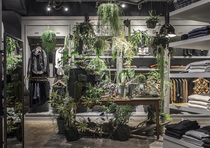 こちらは「TODD SNYDER(トッド スナイダー)」というメンズファッションのお店。 数々の賞を受賞してきたトッド・スナイダー氏の洗練されたコレクションに、絶妙な存在感でグリーンをマッチさせているのはさすがです。