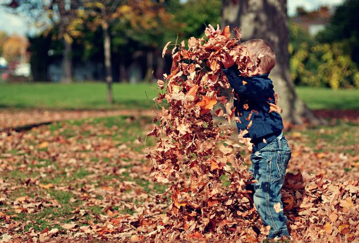 落ち葉シャワーをやってみる!秋ならではの楽しみ方で、普段なかなかできない遊び方。大人も童心にかえってお子様と一緒に思いっきり落ち葉を掛け合ってみると、楽しいですよ!