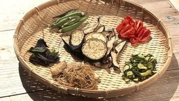 天日干しすれば旨味がぎゅっと凝縮して、食感も楽しい干し野菜に。衛生的に干し野菜が作れるネットなども市販されています。
