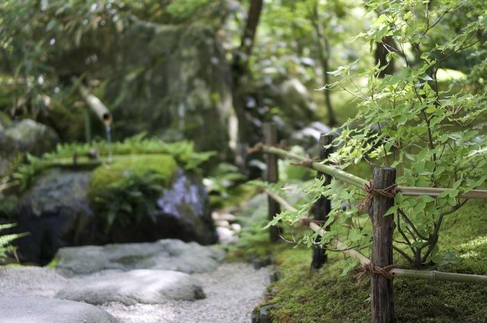 以下では、「足立美術館」の概略と素晴らしい庭園を紹介します。  「出雲大社」へ足を運ぶのなら、ぜひ「足立美術館」にも立ち寄って、雅趣溢れる日本庭園をゆったりと味わいましょう。