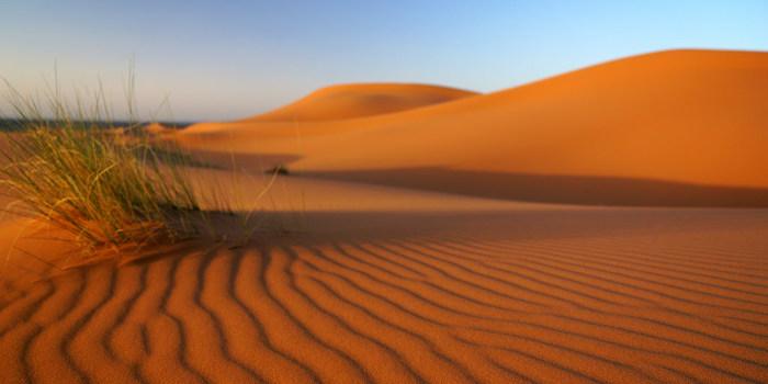 砂は、刻一刻と色を変えてゆきます。風が吹くたびに、砂紋は変わり、二度と同じ景色を見ることができません。メルズーガでは、瞬きをすることさえも惜しくなるほどの絶景が広がっています。