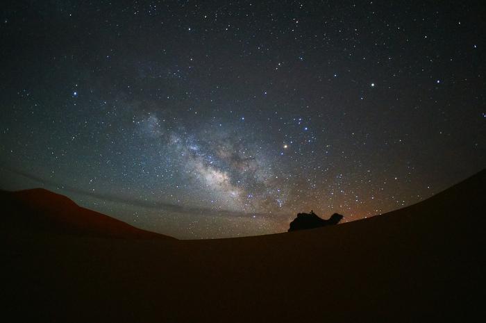 夜になると、満点の星々が砂漠をやさしく照らします。手を延ばすと届きそうなほど、星は光輝き、夜空はまるで天然のプラネタリウムのようになります。