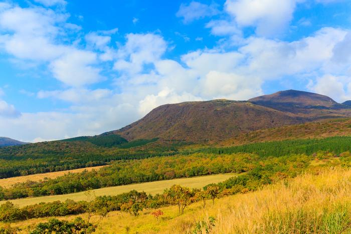 久住高原は、自然豊かな場所。秋は見事な紅葉が広がります。