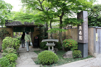 清香園では山田香織さんという女性の盆栽家さんが、女性にも親しみやすい小さめの彩花盆栽の教室も行っています。今ではお弟子さんも外国人が多いそうです。盆栽園に何年か住み込みで修行を行い、卒業後は世界を飛び回る盆栽家になるのだそうです。