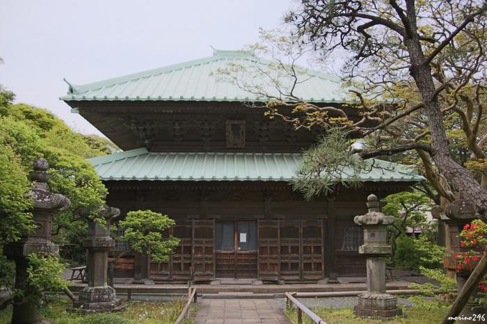 鎌倉唯一の尼寺「英勝寺」は、仏殿・唐門・鐘楼等、見所豊富。【画像は1636年建立の仏殿。】