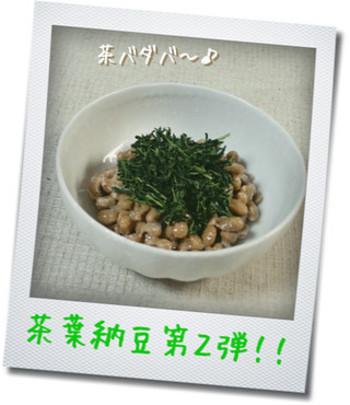 手間をかけずに茶殻を使うなら、納豆に混ぜるのはいかが?これなら、調理時間なしでささっと茶殻の栄養が摂れます。お茶は、玉露がおすすめだそうです。