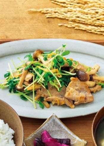 たっぷりの豆苗をのせた豚肉炒め。シャキシャキ感と、味噌のこっくりさがベストマッチな一品です。
