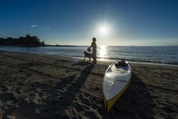 葉山の魅力は、何と言っても、美しい海!葉山エリアには、長者ヶ崎海岸、葉山海岸、一色海岸、森戸海岸など、たくさんの海岸があります。それぞれ雰囲気が異なるので、ゆったり散歩をして、お気に入りの海岸を見つけるのもGOOD。  ビニール袋を用意して、貝殻やシーグラスを拾うビーチコーミングをするのもおすすめです。