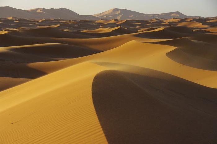 砂の形状がまるで芸術作品のよう。自然のパワーはすごいですね。照りつける太陽、ラクダの行列、非日常を感じる景色。