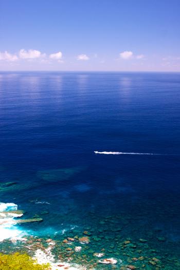 いかがでしたか? 小笠原諸島の海は言葉も出ないほど美しく透き通っています。自然は独立した進化を遂げていて、小笠原諸島特有の生物も素晴らしいです。運がよけばイルカと一緒に泳げるかもしれません。きっと一生の思い出になるはずです。 大自然の残された美しき小笠原諸島、ぜひ訪れてみてくださいね♪
