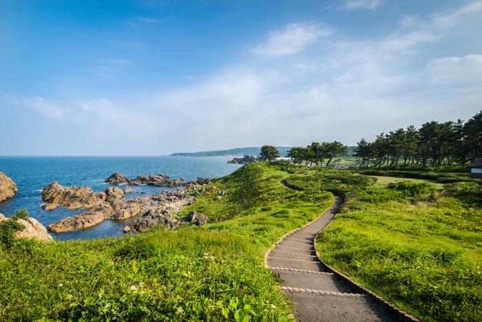 種差海岸駅からも歩いてこれるので、観光客にも大人気。 日本を代表する文人たちも愛していた風景を、現在も楽しむことができます。
