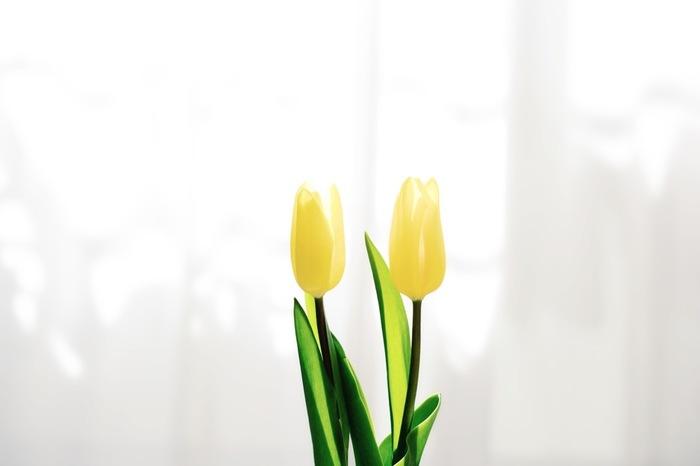 心地よい香りが長続きするタイプが嬉しい。 香りの種類もたくさん。