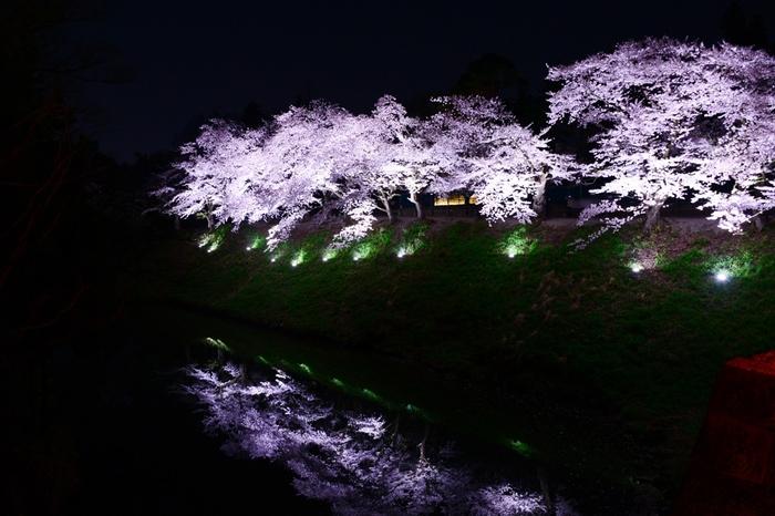 鶴ヶ城は夜桜も有名なんです。 東日本最大級の規模で史跡内全体をライトアップする夜桜は、ぜひ一度見ていただきたい圧巻の美しさ。 お堀の水面に映る夜桜も風情があって素敵です。