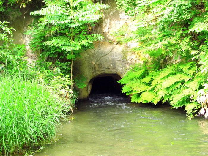 こちらは、虎隊士中二番隊の20名が 撤退する際に通った「戸ノ口堰洞穴」。 猪苗代湖から会津城下に水を引くために掘られた堰(せき)で 長さは約150mもあるそうです。