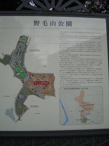 桜木町駅から歩いて15分ほどに野毛山公園はあります。公園内は、展望地区、散策地区、動物園の3カ所に分かれており、バスケットコートや遊具もあって大人から子どもまで一日中楽しめるスポットです。