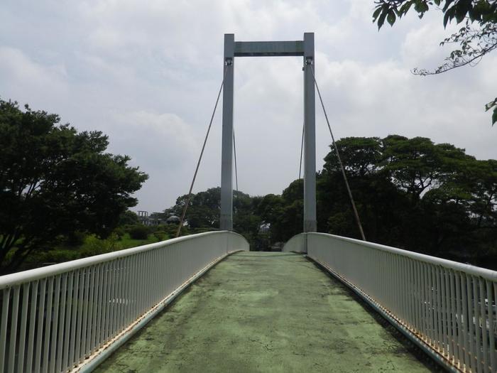 野毛山動物園の入り口前にかかる「野毛のつり橋」は、あの有名なデザイナー柳宗理が手がけたもの。野毛のつり橋は、つり橋型の歩道橋としては前例のない画期的なものでした。他にも公園内の標識や看板も、柳氏が手がけたもので、デザイン好きの方にも楽しんで頂けます。