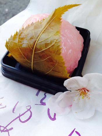 道明寺はいちご入りで、白あんで作られているそう♪春の香りが2つも口いっぱいに広がります!関東風と関西風をどちらも楽しめますよ♡