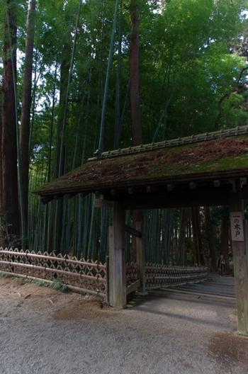 偕楽園は金沢の兼六園、岡山の後楽園と並ぶ「日本三名園」の一つ。園内には約100品種3000本もの梅が植えられており、様々な品種があるため「早咲き」「中咲き」「遅咲き」と長期間に観梅を楽しむことができます。