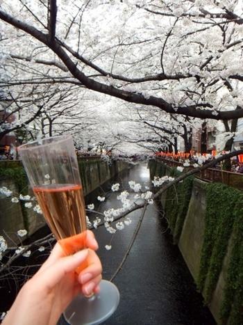 桜の通りに面して、飲食店も多数あります。軒先でワインや軽食を出品しているところもあるので、桜色のスパークリングワインやシャンパンと一緒に桜を楽しんでみるのはいかがですか?