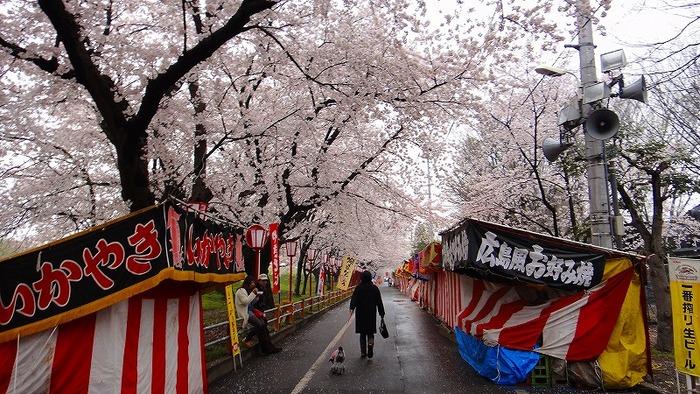 こちらの熊谷桜堤の桜のトンネルにも屋台が出ており、ゆっくり色々つまみながら、桜を堪能することが出来ます。見頃は3月下旬から4月上旬。ライトアップもされるので、夜のお散歩兼ねてお出かけしてみても楽しいと思います。