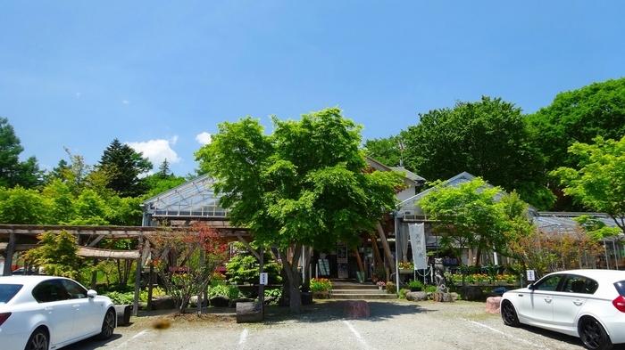 日光霧降高原・チロリン村「カフェ アウル」。緑豊かでナチュラルなカフェです。