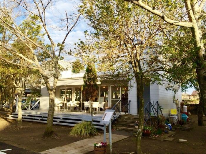 木々に囲まれ、優しい木漏れ日が降り注ぐ素敵なカフェ。