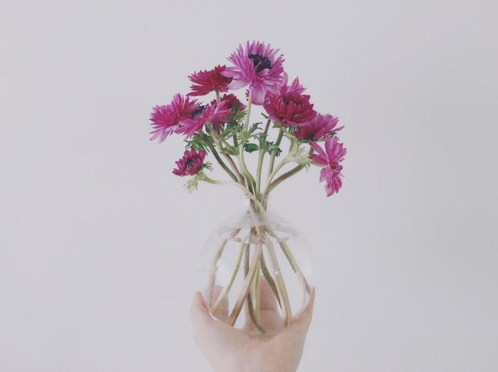 花を生ける高さにもコツがあります。いちばん分かりやすいのが、仕上がりを器の高さの2倍にすることです。ちなみに横に広げる場合は、「器の幅の3倍まで」を目安にするといいですよ。