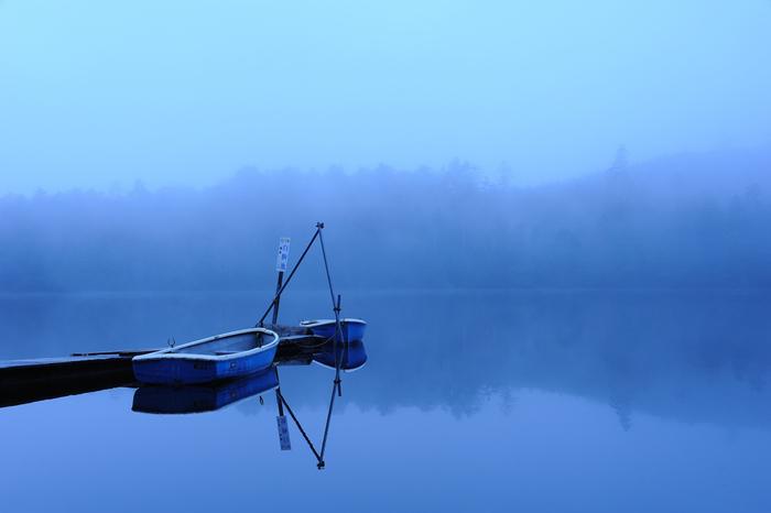 幻想的な白駒池の霧の眺め。
