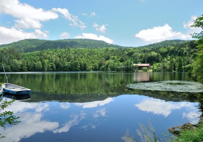 夏の白駒池。夏でも涼やかな山の風が吹き渡ります。