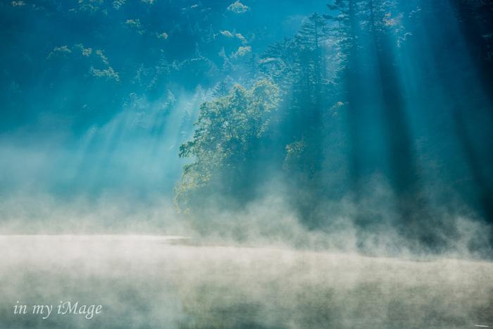 神秘的な苔と原生林の世界を白駒池に見に行こう!