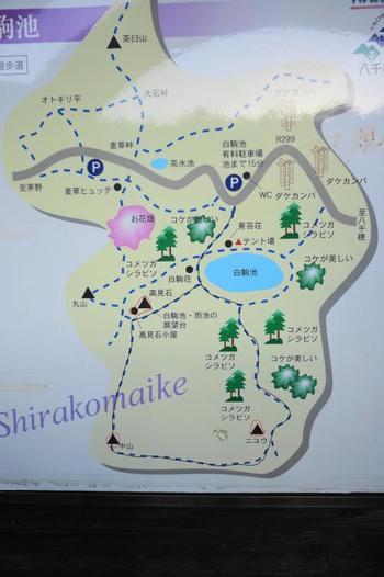 「登山初心者のためのガイド登山・トレッキング」では、 白駒池~高見石(八ヶ岳)のおすすめコースを紹介しています。   ①白駒池から高見石まで登るコース ②麦草峠をベースに高見石、白駒池をぐるっとまわるコース