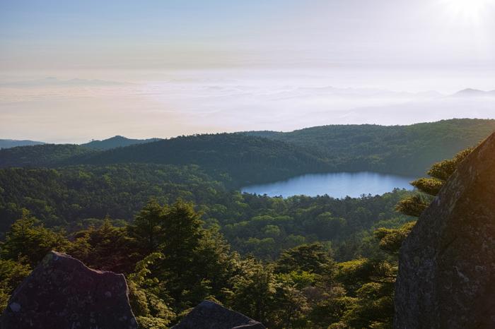 高見石から望んだ白駒池全景