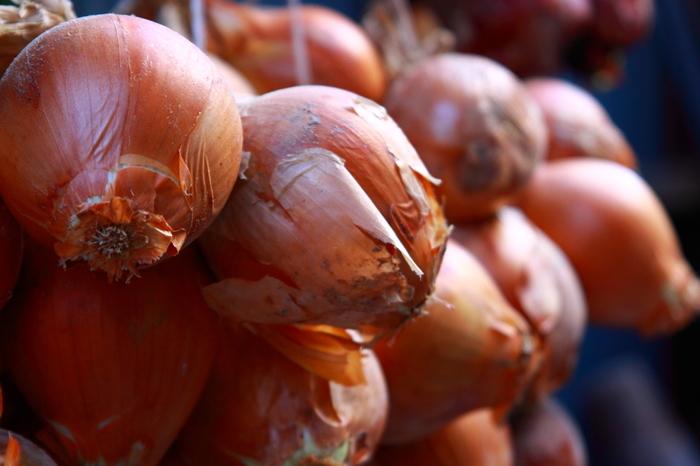 """玉ねぎも1年中手に入るお野菜。その中でも、新玉ねぎと呼ばれるのは""""収穫してすぐに出荷されたもの""""のこと指します。実は、収穫時期は春と秋。秋の玉ねぎも、すぐに出荷されたものは新玉ねぎと呼ばれます。  新玉ねぎの特徴は水分が多いこと。そのため玉ねぎ独特の辛みが感じにくく甘いと感じるんだとか。ただ、その分保存に向かないので、早めに食べるようにしてくださいね。 新玉ねぎは、その甘さを味わえるようにシンプルなお料理がおすすめです。"""