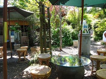 緑に溢れる阿左美冷蔵の庭。