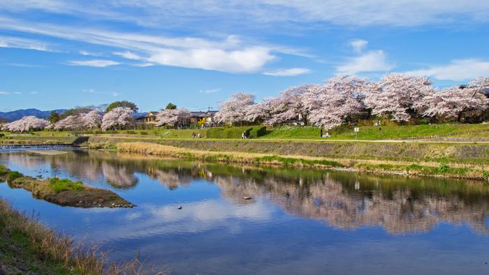 京都御所からほど近い地下鉄烏丸線の丸太町駅界隈にある、お洒落で美味しいカフェとパン屋さんを紹介してきましたが、いかがでしたでしょうか?美味しいフードはもちろんですが、ひとりの時間を楽しめそうなカフェも多く、これから暖かくなってくる季節、春を探しに出掛けてみませんか?