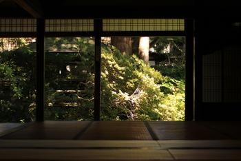 庭を美しく見せる障子欄間・・・縁側から庭を望む景色を楽しむ趣のあるしつらいです。