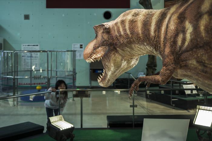 青少年科学センターは、恐竜模型などの展示品があり、子どもが楽しめるスポットです。中でも注目はプラネタリウム。家族連れのお出かけだけでなく、デートにもおすすめなんです。
