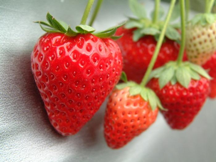 お店に並び始めるとついつい手に取ってしまう甘~くて可愛いイチゴ。真っ赤な宝石のようなイチゴは眺めているだけでもパワーをもらえそうですよね。ですが見た目に負けず栄養価も高い果物で、ビタミンCが非常に豊富で、ミネラル、食物繊維のほか、ポリフェノールや葉酸も含まれています。