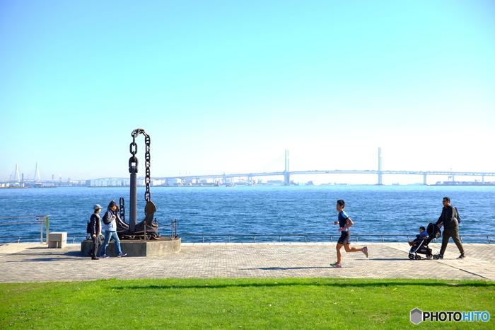 ゆるやかに起状する芝生が広がっており、小高い丘からは、海や横浜ベイブリッジ、港を行きかう船などを臨むことができる憩の空間♪