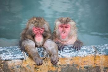 むかしから、お風呂が大好きな日本人。水には穢れを流す作用があると考えられています。