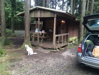 大小のバンガローもあるので、キャンプ趣味がなくても宿泊できます。
