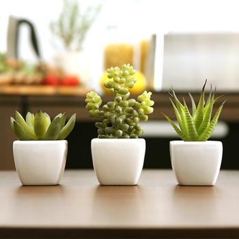 植物をいつも枯らしてしまうという方も、水やりの頻度が少なくていい多肉植物なら育てやすいですよね。光触媒仕様の人工多肉植物なら、水をあげる必要がないんです。水が不要なので、土からカビが生えることもなく衛生的な点も寝室にぴったり◎