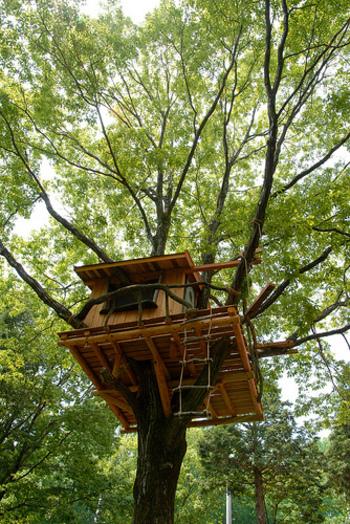 「まかいの牧場」には、自然の中で存分に遊べる施設も充実。 【画像は、「コロボックルの砦」内のツリーハウス】